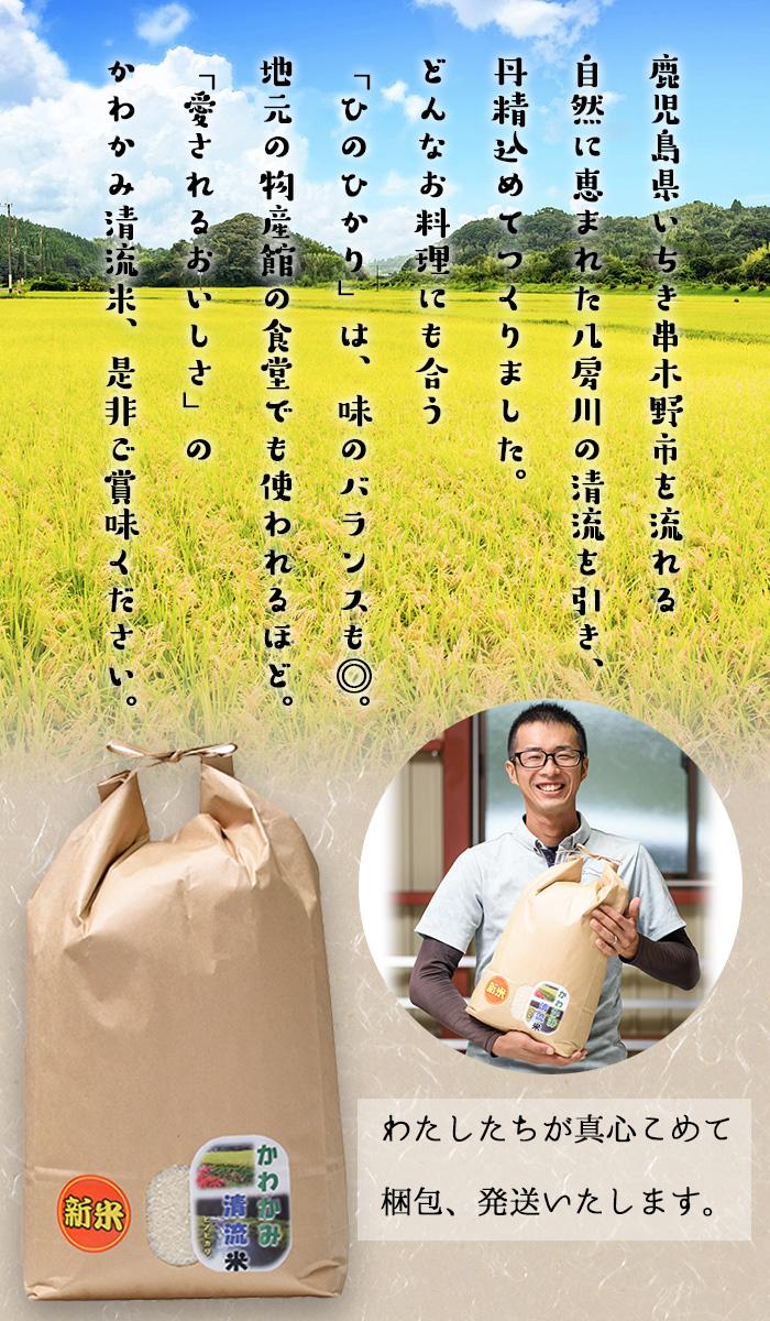 かわかみ清流米